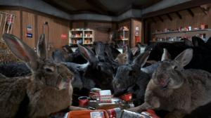 nightofthelepus5