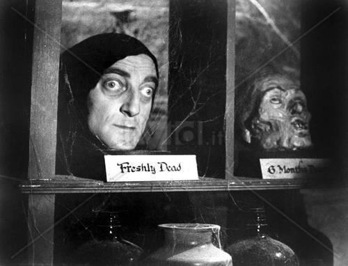 Young Frankenstein – HORRORPEDIA