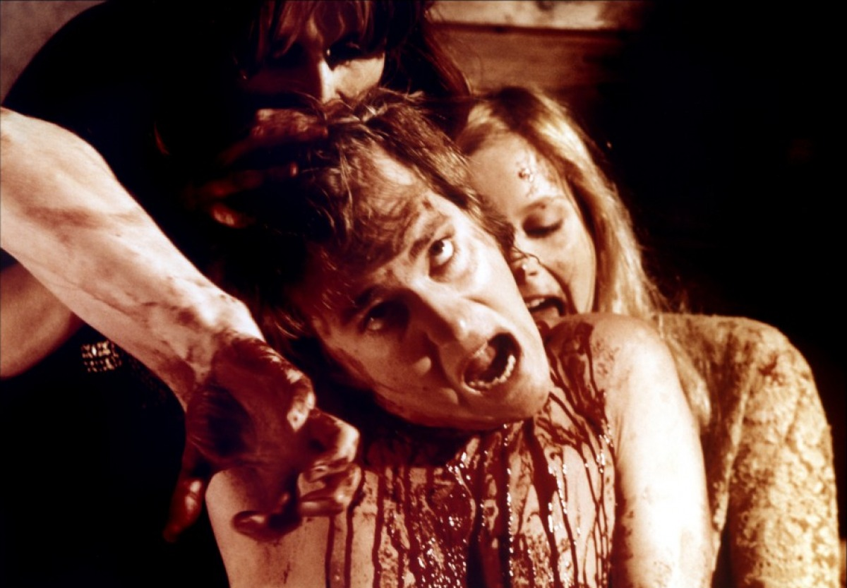 http://horrorpediadotcom.files.wordpress.com/2013/09/vampyres-1974-01-g.jpg