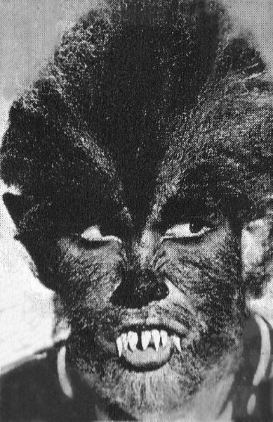 Werewolf Teen Wolf Wiki FANDOM powered by Wikia