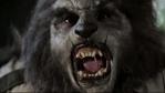 wolfcop-grabmondozillawolfcop-grabWOLFCOP_1CC_Painted_2EZ_webCC-WOLFCOP-POSTER-REDwolfcop