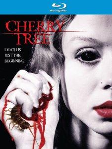 Cherry-Tree-