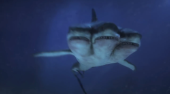 3-Headed-Shark-underwater-shotmondozilla3-Headed-Shark-Attack-movie-20153-Headed-Shark-Attack-boob-shot3-Headed-Shark-underwater-shot