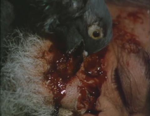 Beaks-1987-bird-attack