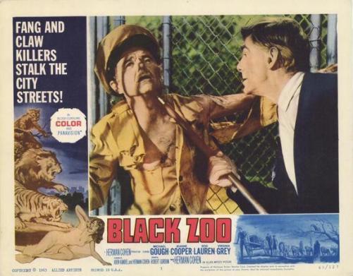 black zoo elisha