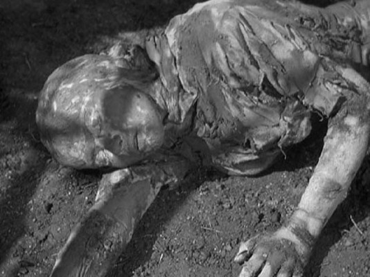 the mummys curse Find trailers, reviews, synopsis, awards and cast information for the mummy's curse (1944) - leslie goodwins on allmovie - ostensibly taking.