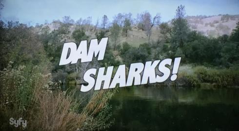 Resultado de imagem para dam sharks