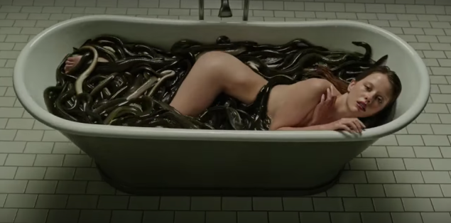 a-cure-for-wellness-2016-bath-full-of-eels